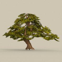 Game Ready Tree 21 3D Model