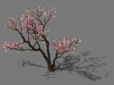 New Village – Peach 03 3D Model