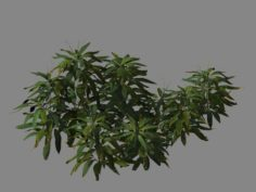 Journey to the West – bamboo shrub 03 3D Model