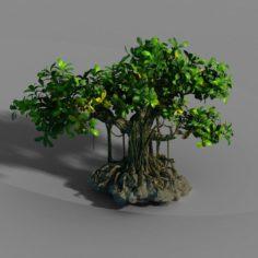 Small bamboo peak – big banyan tree 01 3D Model