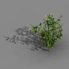 Koike Town – Plant – Bamboo 01 3D Model