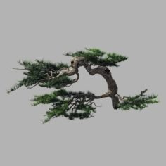Journey to the West – Putuo Mountain – Pine 02 3D Model