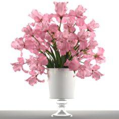 Bouquet of pink flowers 3D Model
