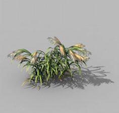 Brutal tribe – reed 02 3D Model