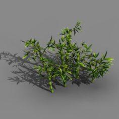 Koike Town – Plant – Bamboo 02 3D Model