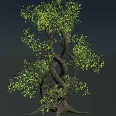 Intertwined Tree						 Free 3D Model