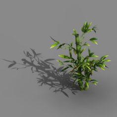 Koike Town – Plant – Bamboo 03 3D Model