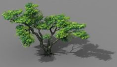Explore the mountains – Cliff – Tree 03 3D Model