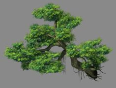 Explore the mountains – Cliff – Tree 01 3D Model