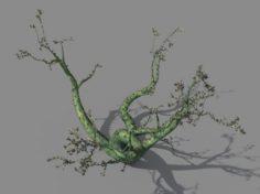 New Village – ornamental tree 01 3D Model