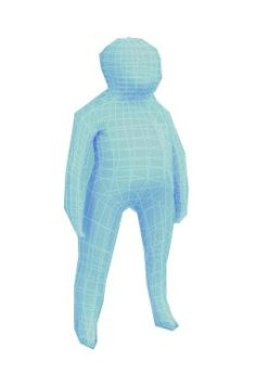 Child human low-poly rigged anatomic model 3D Model