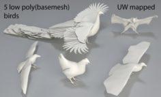 Birds – 5 pieces-low poly-part 2 3D Model