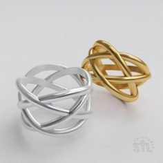 Wicker ring 3D Model
