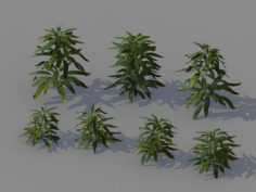 Journey to the West – Bamboo Shrubs 02 3D Model