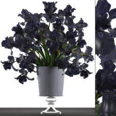 Bouquet of black flowers 3D Model