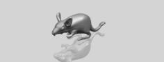 Rat 01 3D Model