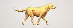 Dog 01 3D Model