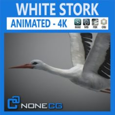 Animated Stork 3D Model