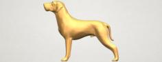 Bull Dog 06 3D Model