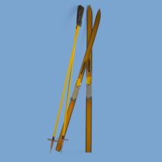 Skiing 3D Model