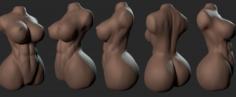 Torso Woman 1 3D Model