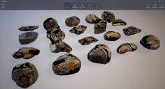 Rocks pack 2 3D Model