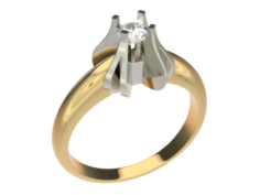 Ring0028 Free 3D Model
