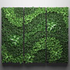 Vertical gardening picture 3D Model