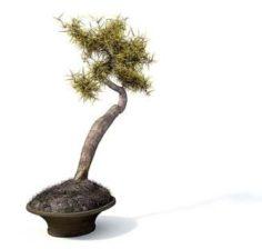 Flower pot 9 3D Model