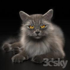 CAT 4                                      3D Model