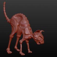 COTyara 3D Model