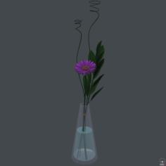 Gerbera daisy in vase 3D Model