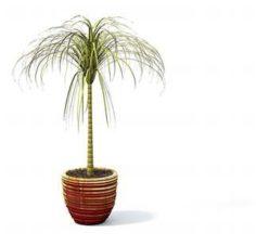 Flower pot 6 3D Model