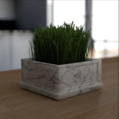 Grass decoration 3D Model
