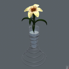 Lily in vase 3D Model
