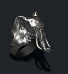 Elephant ring 3D Model