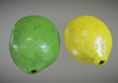 Lemon and Lime 3D Model