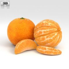 Mandarin Orange 3D Model