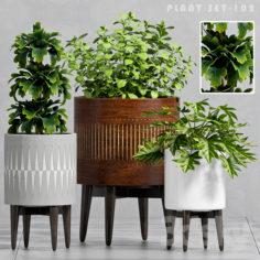 PLANT SET -102                                      3D Model