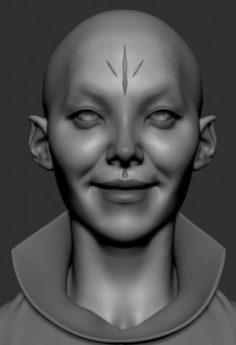 Sheeva 3D Model