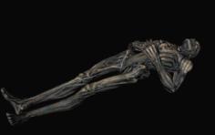 Draugr body 3D Model