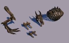 Dragon bones 3D Model
