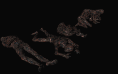 Burnt corpses 3D Model