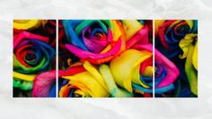 Triptych Wall Art Multicolored Roses 3D Model