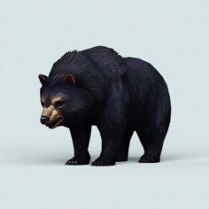 Wild Bear 3D Model