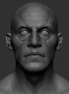 Jaw Head v2 3D Model
