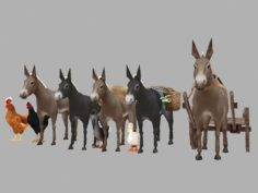 Domestic animals 3D Model