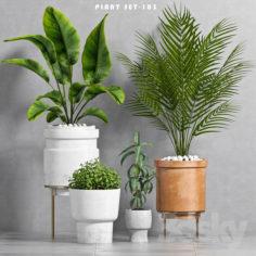 PLANT SET -103                                      3D Model