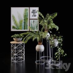 Green Set                                      3D Model