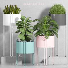 PLANT SET -104                                      3D Model
